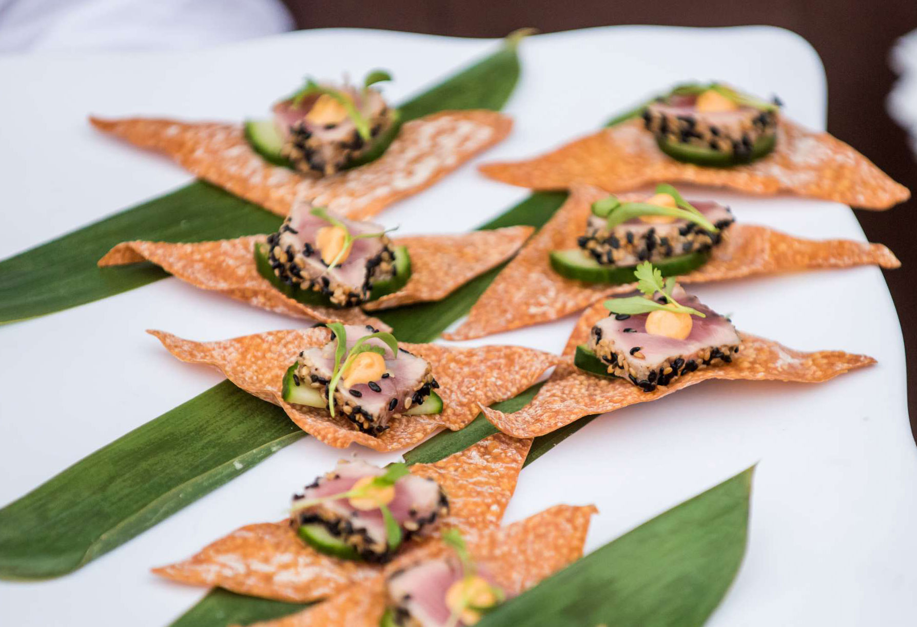 Appetizers with tuna